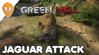 jaguar attack green hell ep 3