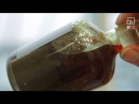 СФУ. Комплексная лаборатория нефти и газа