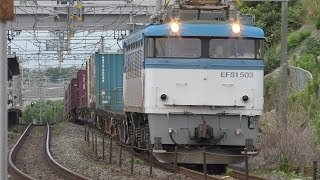 【JR貨物】5056レ EF81-503