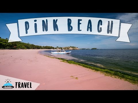 Pink Beach - Lombok - The Lostboys Travel (Promotional Video)