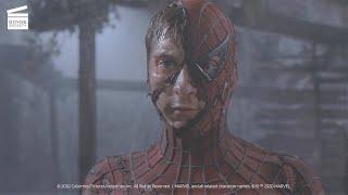 Spider-Man: Spider-Man vs Green Goblin
