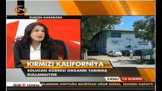 Solucan Gübresi Ekosol Kanal24 Haber Bülteni