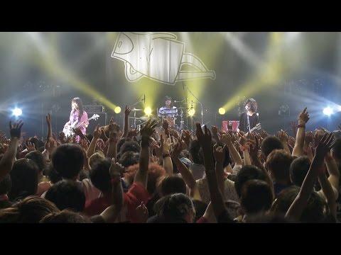 【初回盤DVD】ヤバイTシャツ屋さん「We love Tank-top」【teaser映像】