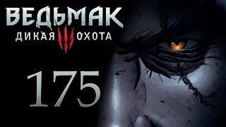 Ведьмак 3 прохождение игры на русском - Дела государственной важности [#175]