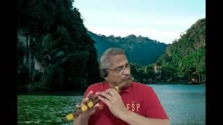 Aaj ki Raat Mere Dil Ki Salami (Flute on Karaoke)