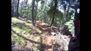 Wasabi Trail in Flagstaff Arizona