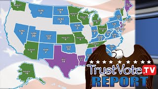 Clues, Causes, & Consequences | TrustVote Report