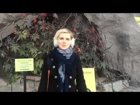 Cекс чат без регистрации - Москва