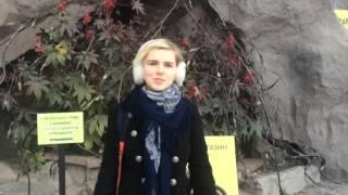 видео Билеты в Музей Пушкина. Афиша и репертуар Музея Пушкина.