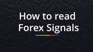 How to read forex signals - necessary guidelines when trading forex without investment