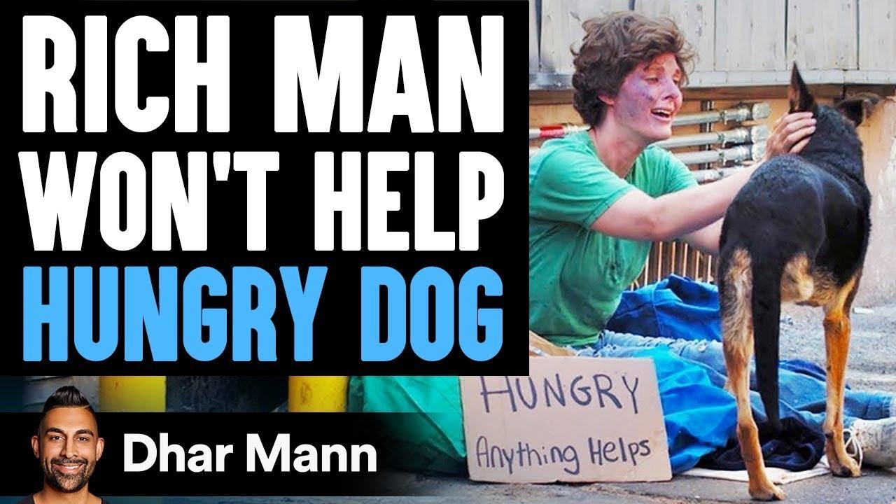 Rich Man Won't Help Hungry Dog, Then A Homeless Woman Teaches Him A Lesson   Dhar Mann