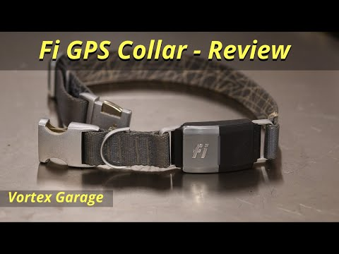 Fi GPS Collar for Dogs - Full Review - Vortex Garage