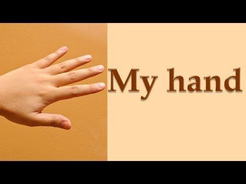 Как по английски руки