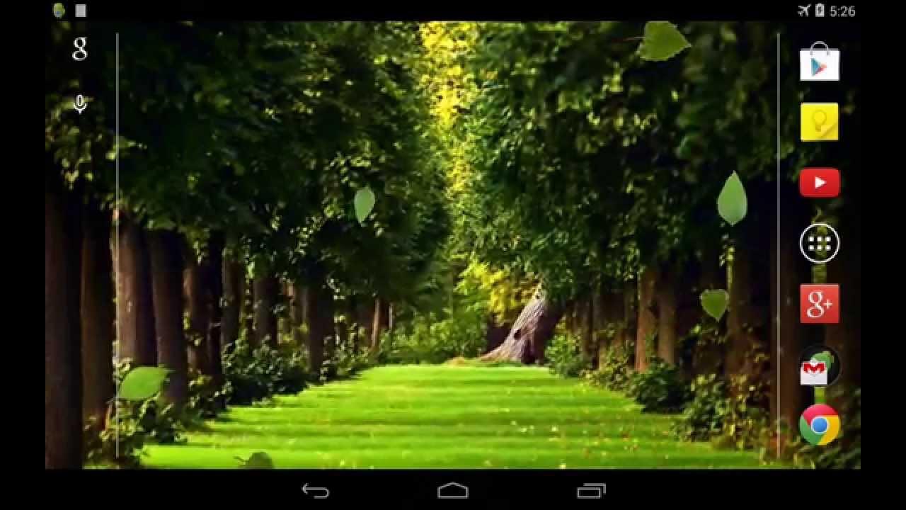 3D Falling leaves Live Wallpaper - YouTube