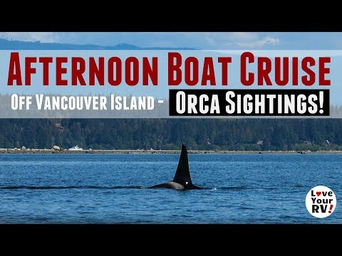 Afternoon Boat Cruise Near Campbell River, BC - Orca Sightings!