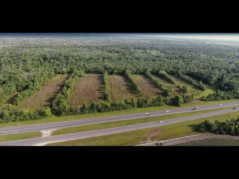 1684 Acre Sugar Cane Plantation - Bonnette Aucitons