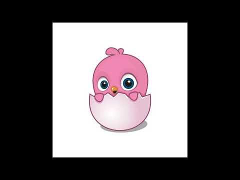 Rüyada Yumurtadan Civciv çiktiğini Görmek Youtube