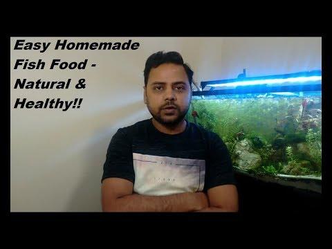 Easy Homemade Fish Food - Natural & Healthy!!