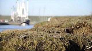 Impressionen aus Wremen an der Wurster Nordseeküste