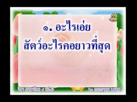 051A+4210757+ท+ปริศนาคำทาย+thaip4+dl57t1