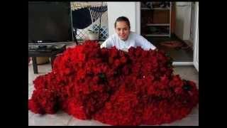 Света все цветы эти для тебя .С днем рожденья!!!!!!!!!!!