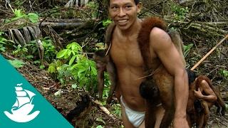Children of the Jaguar - Now in Hight Quality! (Full Documentary)
