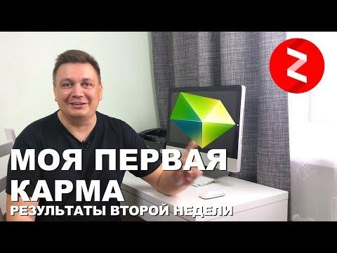 Вторая неделя в Яндекс Дзен. Первые Деньги. Первая карма + Бонус как использовать бонусные показы.