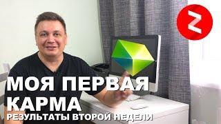 вторая неделя в Яндекс Дзен. Первые Деньги. Первая карма  Бонус как использовать бонусные показы