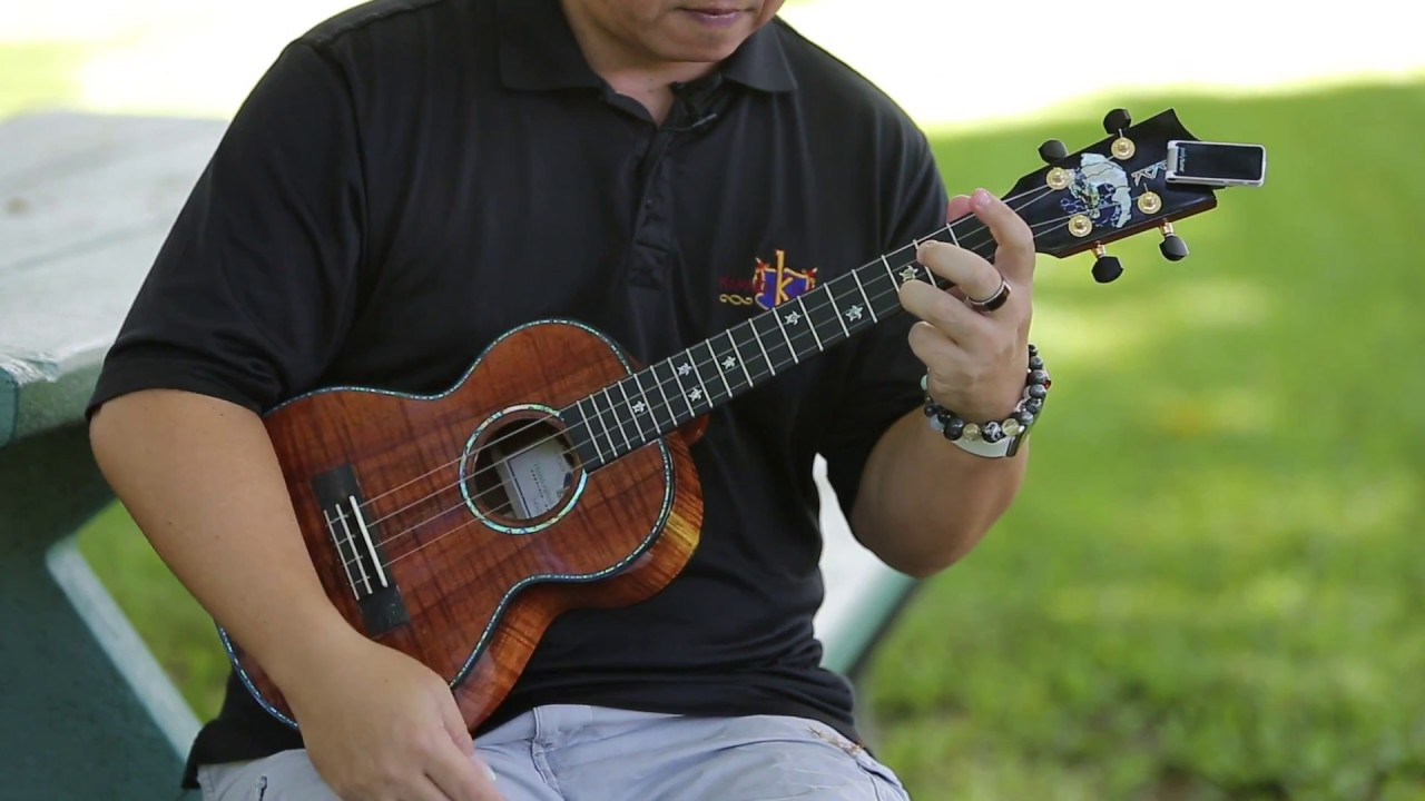 Learn how to play ukulele hiilawe with herb ohta jr youtube learn how to play ukulele hiilawe with herb ohta jr hexwebz Image collections