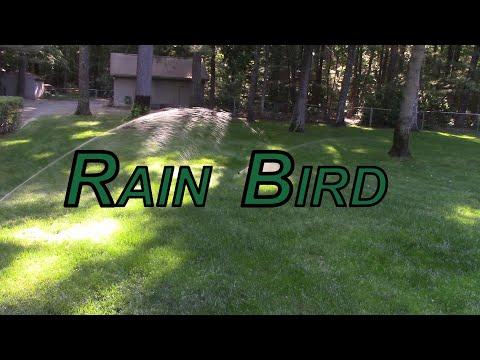 Rain Bird 5000 Plus Series Sprinkler Heads(Easy Replacement)