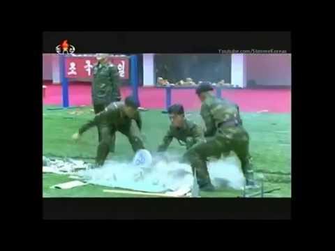 DPRK Academy