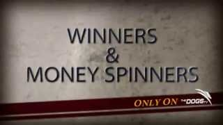 Winners & Money Spinners