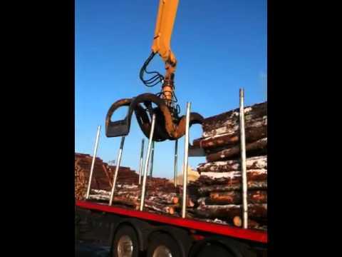 Déchargement bois au port de Bayonne