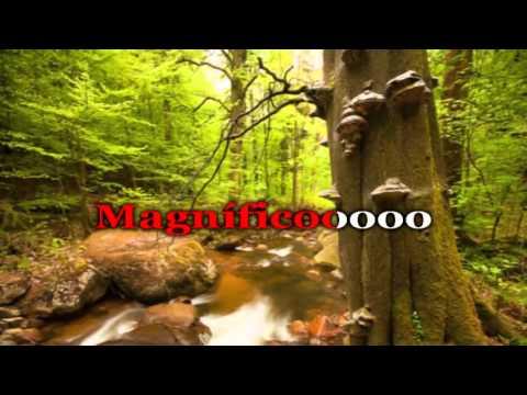 Christine D'Clario - Magnifico - Karaoke Pista HD