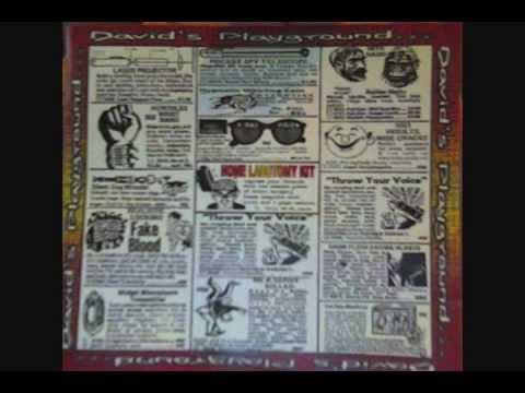 David's Playground - Disillusioned - Home Lobotomy Kit LP