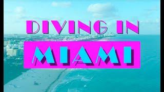 Dive Miami Promo Video