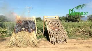 Palmex International Fire-Retardant