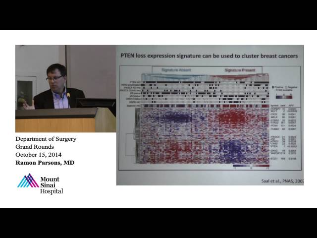 PTEN Tumor Suppression in Cancer