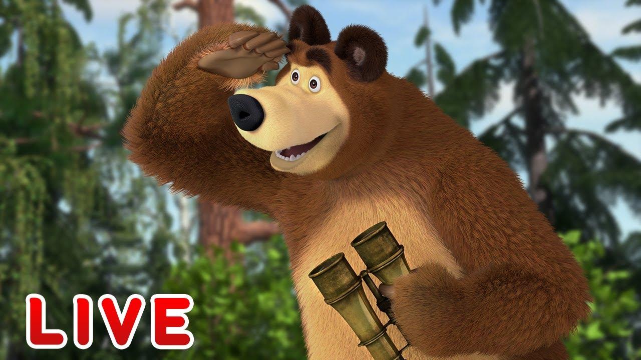 ماشا والدب 👮♂️ LIVE STREAM! 🦔🌲 دورية الغابة 🔔⭐ Masha and the Bear