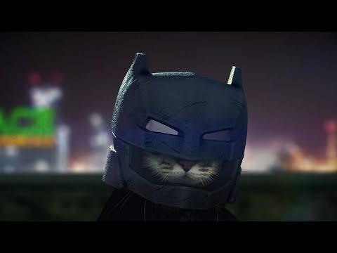 BATCAT v SUPERCAT (Batman v Superman Ultimate Cat Edition)