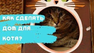 Домик для кота своими руками 2019 Тимофей Гарин