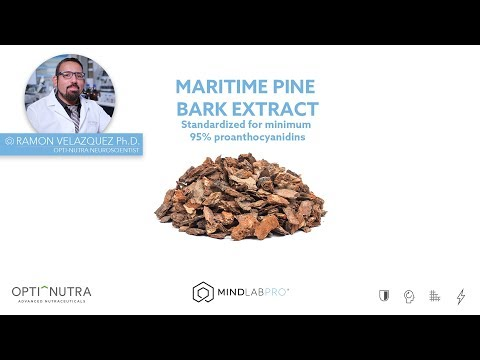 maritime-pine-bark-extract-with-dr.-ramon-velazquez,-ph.d.-|-mind-lab-pro®