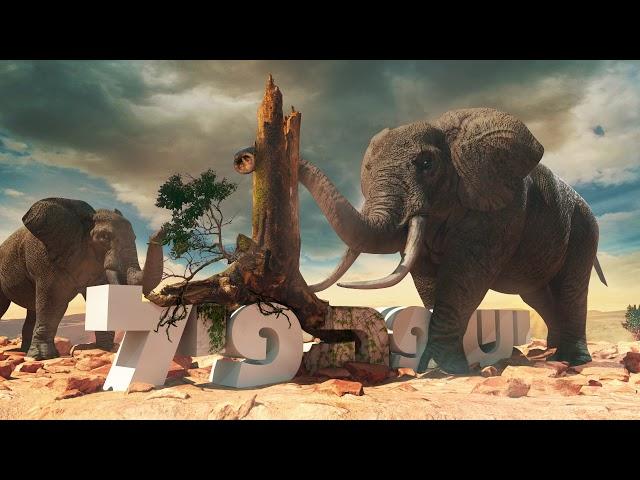 דון טי & ג'ו - יש פה פיל (Prod. By dON-t)