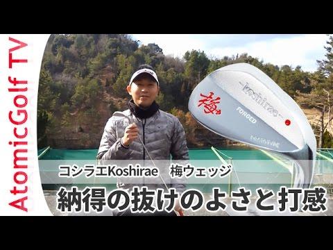 コシラエ ゴルフクラブ モデル 梅ウェッジ KOSHIRAE 試打動画