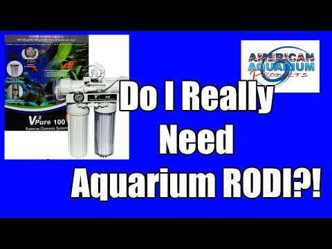 Do I Really Need Aquarium RODI? With A Catch...