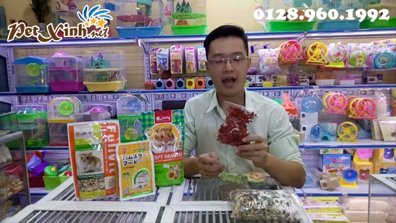 Cho hamster ăn gì? Để Hamster được mập khỏe
