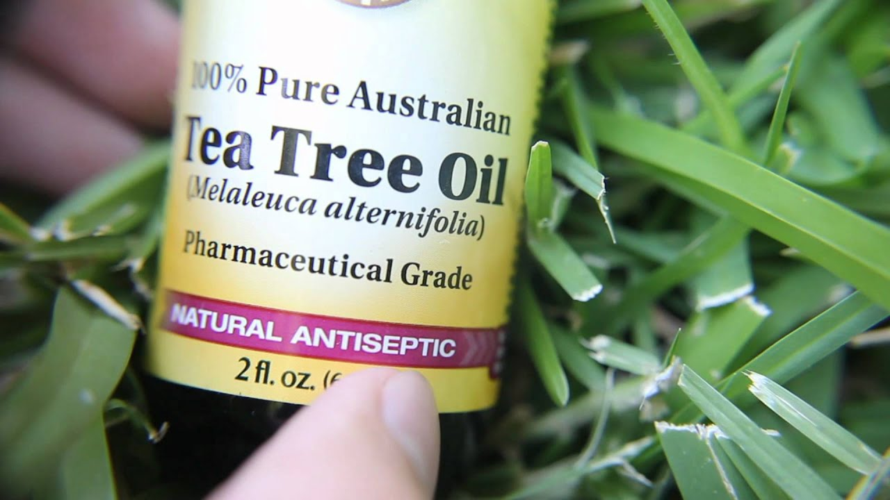 Tea tree oil for a bad nail! - YouTube