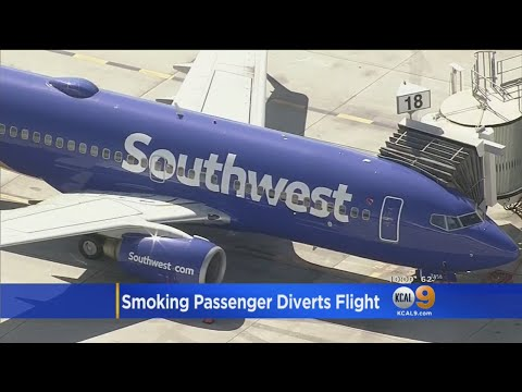 51737d02c For more infomation >> Jet Bound For LAX Makes Emergency Landing After  Passenger Tries To Smoke Pot - Duration: 2:00.