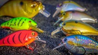 Squarebill Crankbaits For Spring Bass Fishing!