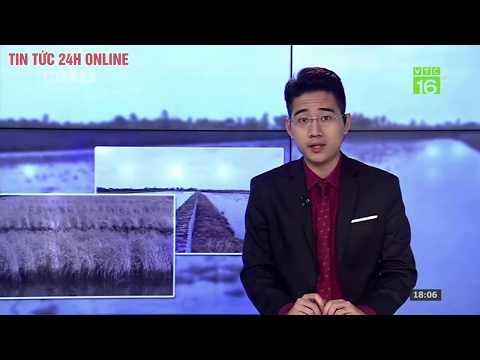 Bản Tin Thời Sự Nông Thôn Ngày 18/02/2020 | Tin Tức Việt Nam Mới Nhất | Tin Tổng Hợp Người đưa Tin
